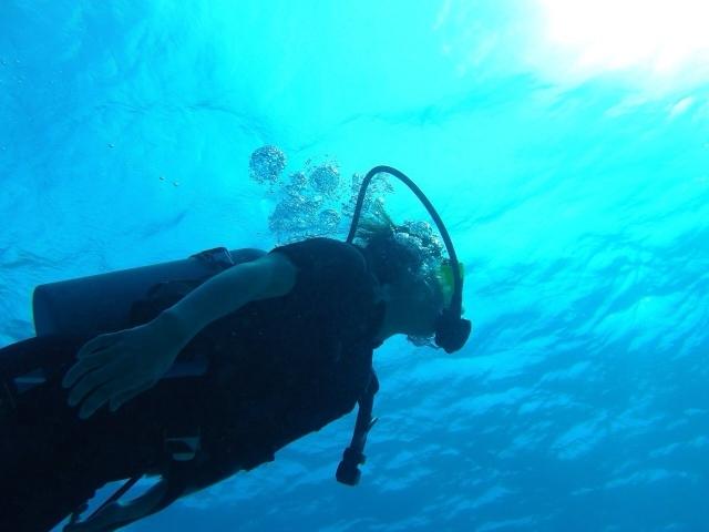 ダイビングの種類