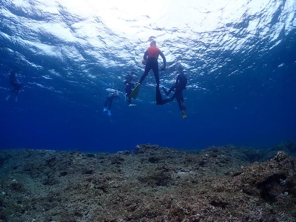 石垣島体験ダイビング黒島2019年4月2日シュノーケリング2