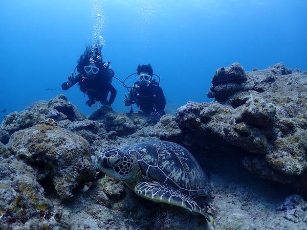 石垣島体験ダイビング2019年4月10日
