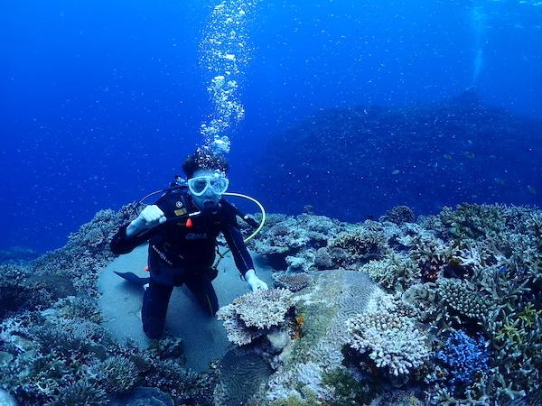 石垣島体験ダイビング2019年6月9日