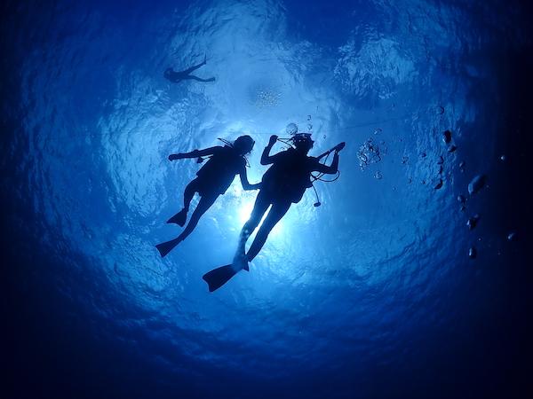 PADIマスター・スクーバ・ダイバー〜最高峰の遊びの達人へ〜【石垣島】