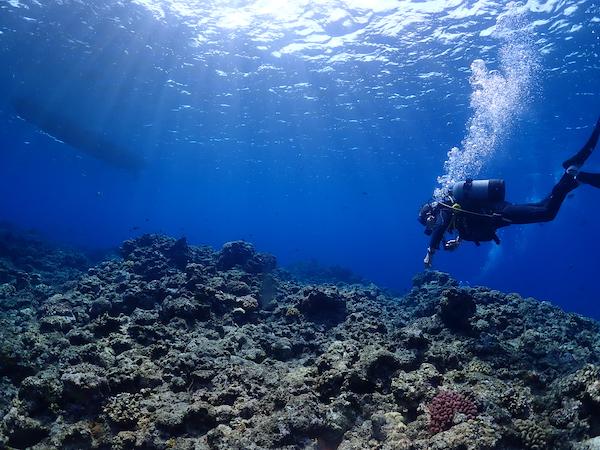 石垣島体験ダイビングのライセンスなしの場合です