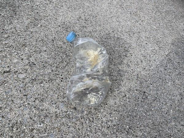 石垣島ダイビングクリーンアップゴミ回収