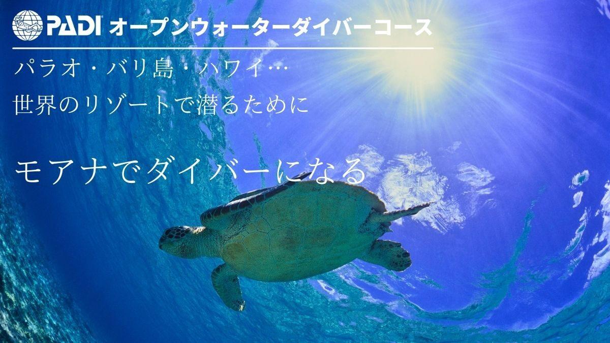 モアナ石垣島のPADIオープンウォーターダイバーコース