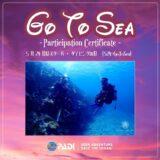 5月24日(GO TO SEA)はスキューバダイビングの日【2021年沖縄石垣島】
