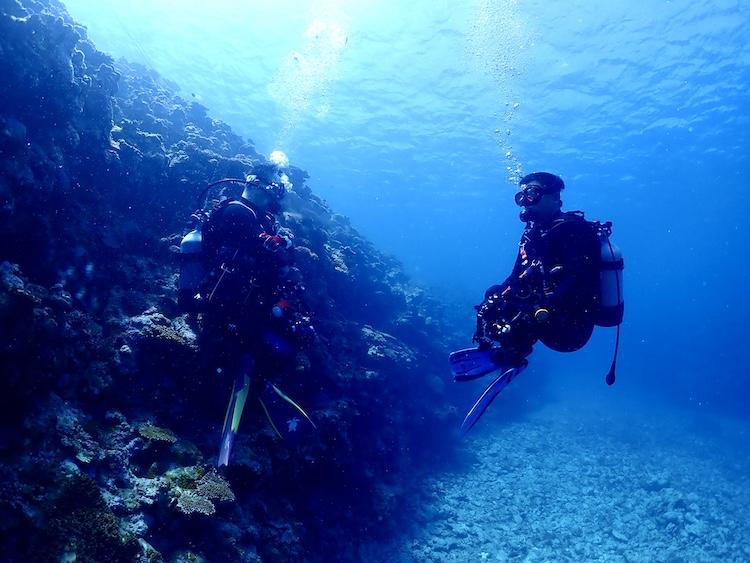 5月24日GO TO SEA(海へ行こう!)スキューバダイビングの日【沖縄石垣島モアナ】